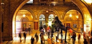 Il Natural History Museum