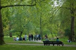 Green pPark, il più piccolo dei parchi di Londra